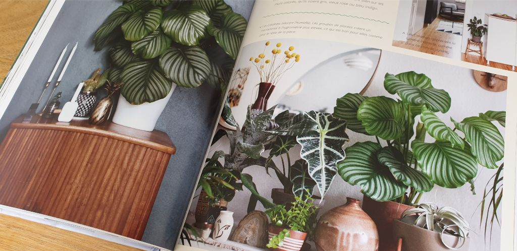 livre jardinage